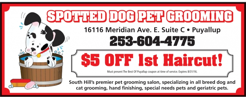 Mobile Dog Grooming Maple Valley Wa