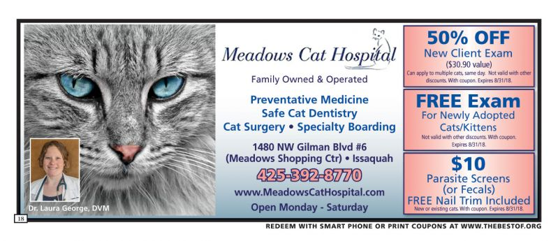 Meadows Cat Hospital