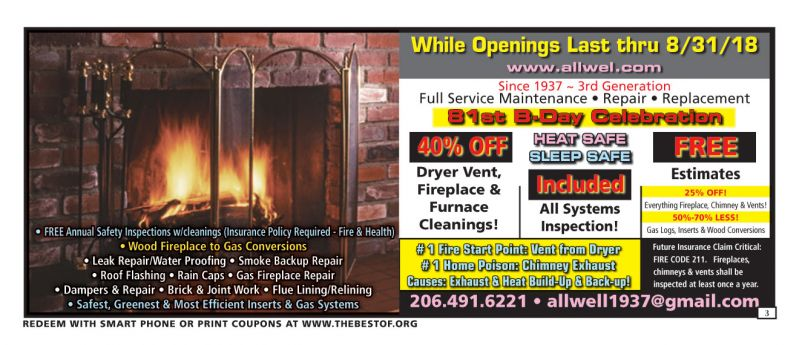 THE Fireplace & Chimney Service