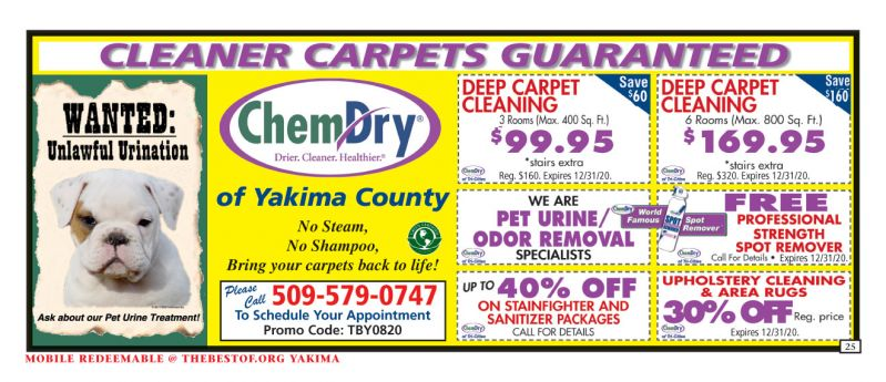 Chem Dry of Yakima County